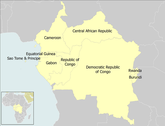Central African countries to set up single regional economic
