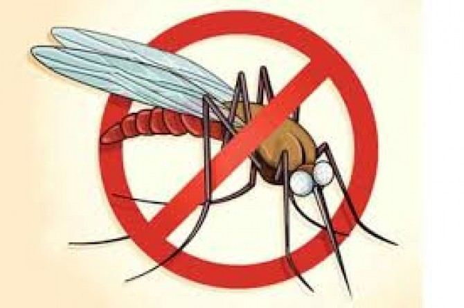 Img : Malaria claims 47 lives in Mozambique's Nampula province
