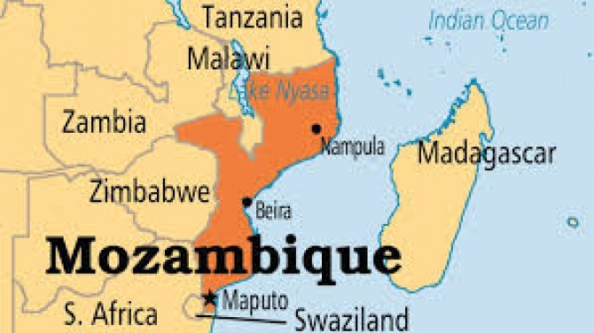 Img : Mozambique, Botswana to cooperate in production of FMD vaccine