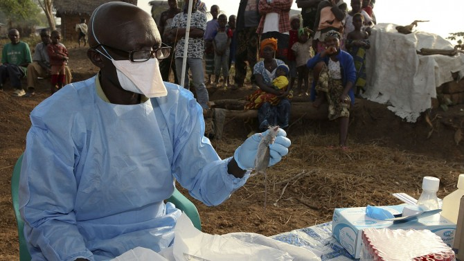 Img : Sierra Leone: Health ministry confirms three Lassa Fever cases