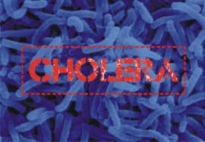 Img : Nigeria: Cholera outbreak extends to two more local govts in Adamawa State